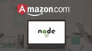 Use Angular 5, Node.js, Stripe and Algolia to build a complete Amazon website!
