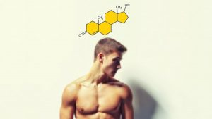Alpha Status- Triple Your Testosterone and Become Superhuman udemy course free download - freetutorialsus.com