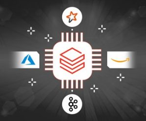 Data Engineering using Databricks features on AWS and Azure